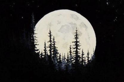 éjszakai sötét tájkép fákkal és világító holddal