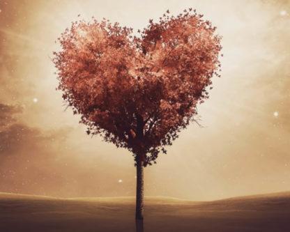 szív alakú fa
