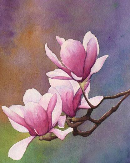 Magnólia virág