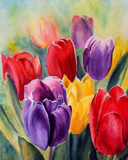 Színes tulipánmező