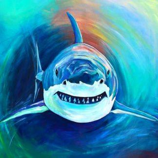 cápa szemből