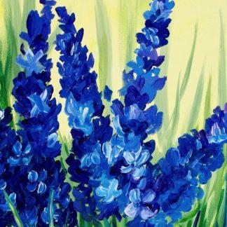 kék színű virágok