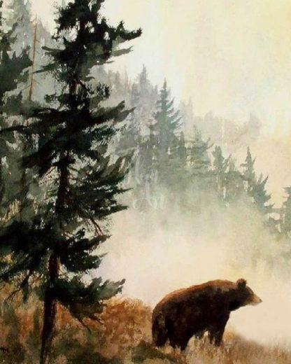 Barna medve az erdőben
