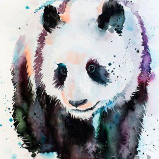 a kép színes panda macit tartalmaz