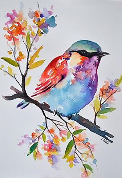 színes madár egy faágon