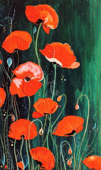 pipacs virágok