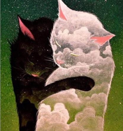 a kép tartalma: fekete macska, fehér macska